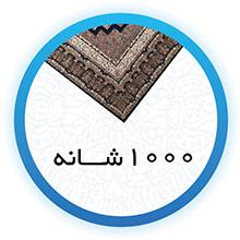 1000Shaneh.jpg